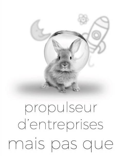 propulseur_d_entreprises